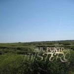 Cerchi nel grano nella zona Tragliatella a Roma, bufala o realtà?