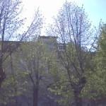 """CONCORSO """"MEGAL(M)ITI & MEGAL(M)ITICHE"""" – CAT 2 """"FOTOGRAFA IL MISTERO"""" – Foto delle Mura Megalitiche di Alatri scattate da Domenico La Posta di Sora"""