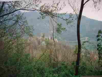 new_I ruderi castello di Cuccagna sopra Faedis nel 1989 ancora danneggiati dal terremoto del 76