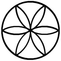 15 Fiore della vita