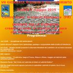 SABATO 2 MAGGIO 2015 – VII GIORNATA MONDIALE DEL LABIRINTO