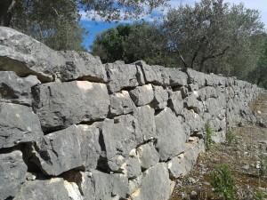 1 Terrazzamenti Monte Capraro