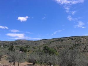 6 le colline alatrensi- sullo sfondo monte Rotonara che super ai 2000 metri di quota