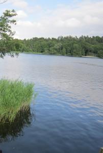 Lago Kölmjärv in Svezia