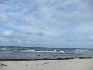 Costa nord-orientale dell'isola di Fåro nel Baltico