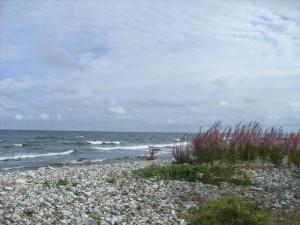 10 Una spiaggia di Faro