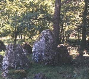 2 Menhir del sito Lejstu rojr a Gotland