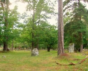 4 Menhir sito di Lejstu rojr - Gotland