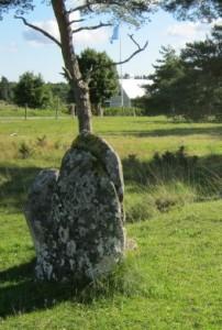 6 menhir del sito di Galrum a Gotland- Svezia