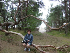 9 Sonia Palombo con un albero danzante