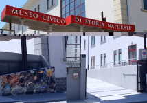 Ingresso Museo di Storia Naturale di Trieste