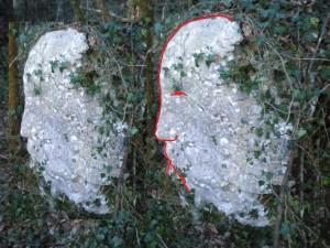 1 Nuovo volto individuato da Adinolfi