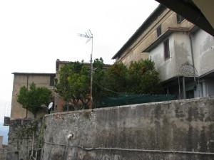 44 Muro di contenimento dei giardini di Palazzo Pecci