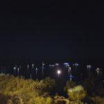 Segnalazione da Marina Piccola, Capri (NA) del 15 Agosto 2016