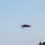 Oggetto dubbio catturato in una foto – Segnalazione da Sferracavallo (PA) – Ufo o insetto?