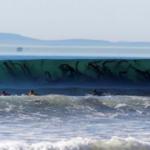 Storie di mare; la bufala delle creature tentacolari che ghermiscono bagnanti.