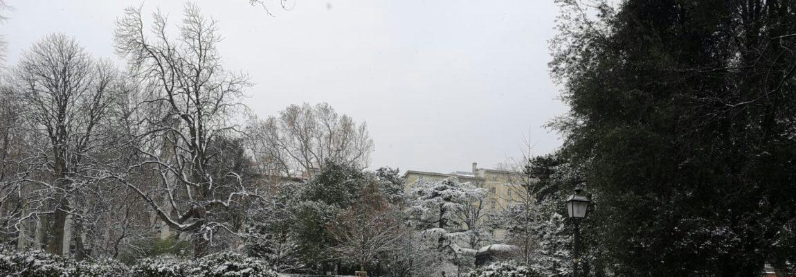 Photo Gallery: Nevicata a Trieste!