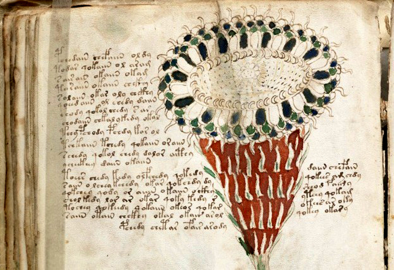 Voynich 1